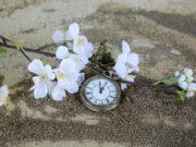 zmiana czasu Lexagit.pl porady prawne online